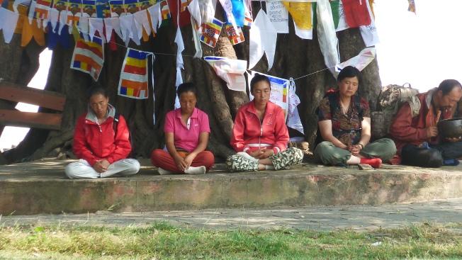 Lumbini meditatie                                       foto : jampa 2011